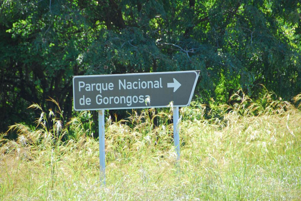 8542170328_e015a4a3bd_b_gorongosa