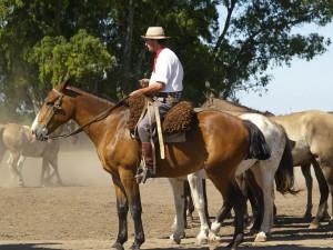 Reitferien in Argentinien